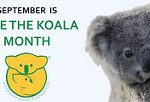 Save the Koala Month