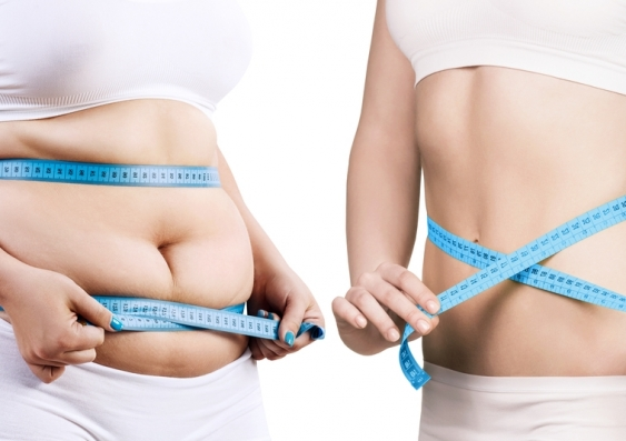 Are genes, joules or gut bugs to blame for weight gain ...